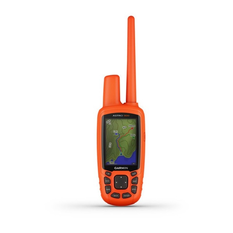 GPS-ошейник Garmin Astro 900 с ошейником Garmin T9 (фото 3)